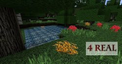 4-real-texture-pack