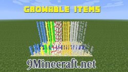 Growable-Items-Mod
