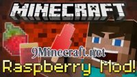 Raspberry-Mod
