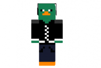 Cool-perry-skin