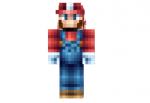 Mario-bros-skin