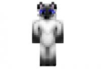 A-cat-skin
