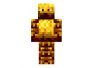 Blaze-steve-skin