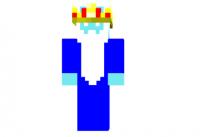 Ice-king-skin