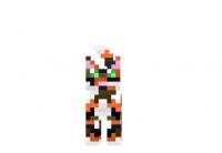 Calico-cat-skin