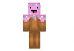 Cupcake Boy Skin