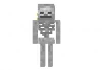 Enemy-skeleton-skin