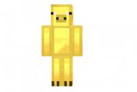 Gold-pig-skin
