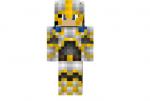 Knight Gs Skin