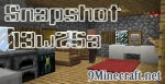 Snapshot 13w25a