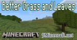 Better-Grass-and-Leaves-Mod