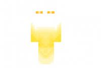 Bright-gold-skin
