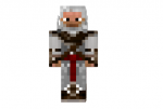Guild-master-skin