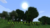 Naturalistic-texture-pack