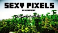 Sexy-pixels-texture-pack