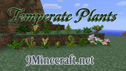 Temperate-Plants-Mod