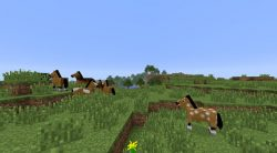 Horse-Village-Seed