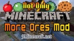 Not-Only-More-Ores-Mod