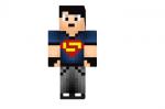 Super Guy Skin