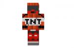 Tnt-guy-skin