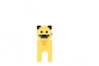 Pug-skin