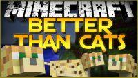 Better-Than-Cats-Mod