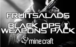 Black-Ops-2-Weapons-Pack