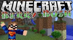BerryBush-Mod