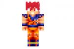 Super Saiyajin Dios Goku Skin