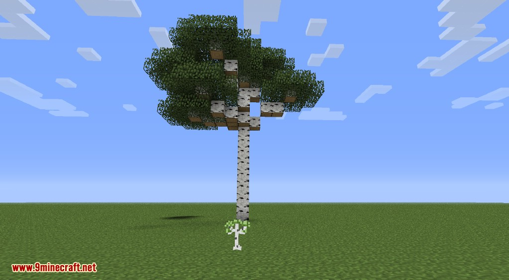 Better Biomes Mod Screenshots 41