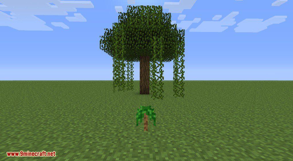 Better Biomes Mod Screenshots 42