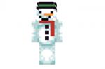 Frosty the Snowman Skin