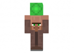 Villager-crrying-skin