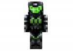 Guerrero-verde-skin