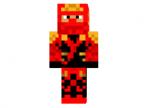 Red Ninja Assasin Skin