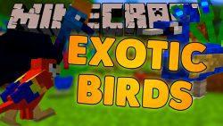 Exotic Birds Mod