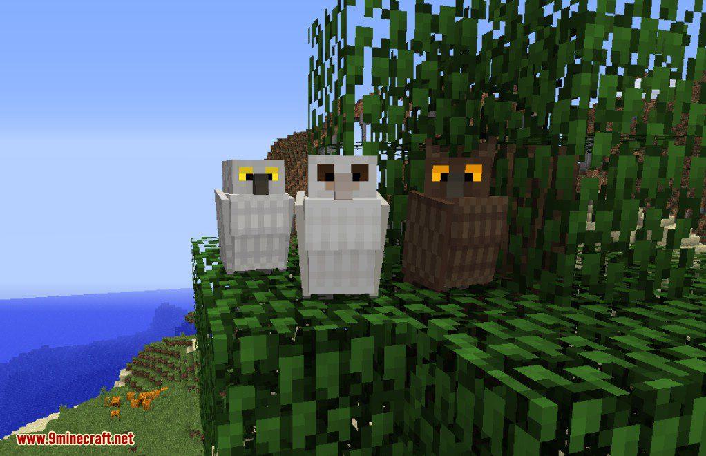 Exotic Birds Mod 1 12 2 1 11 2 Birds Take Over Minecraft