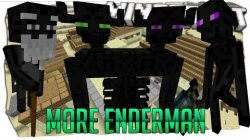 More-Enderman-Mod
