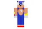 Sonic-adventure-skin