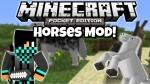 horses-mod-4