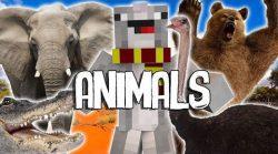 Mo-Creatures-Command-Block