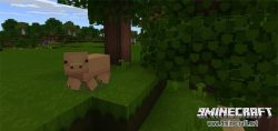 life-texture-pack-for-mcpe
