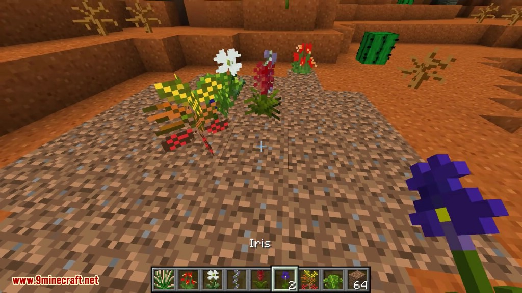 Tropicraft Mod Screenshots 11