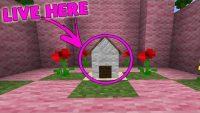 Tiniest Minecraft House Command Block