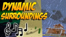 Dynamic Surroundings Mod