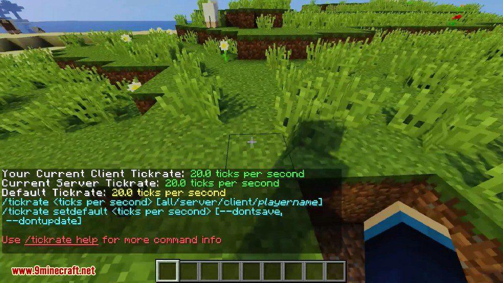 TickrateChanger Mod Screenshots 1