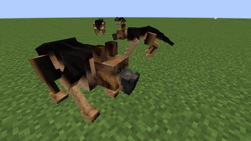Animalium Mod 2