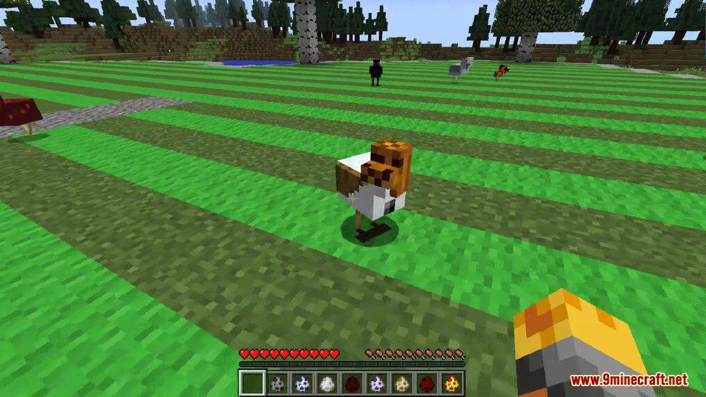 Chickens Mod Screenshots 10