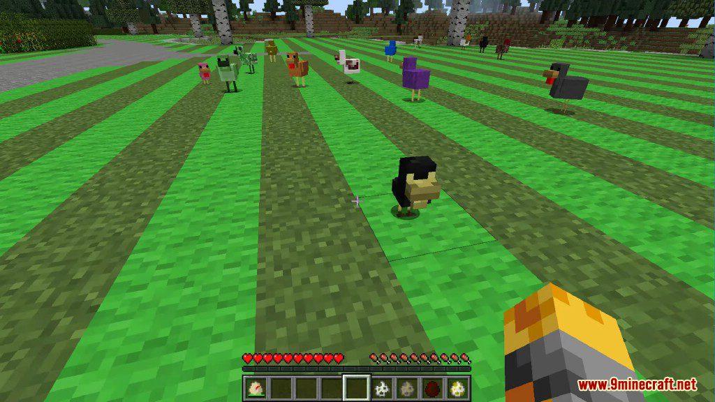 Chickens Mod Screenshots 20