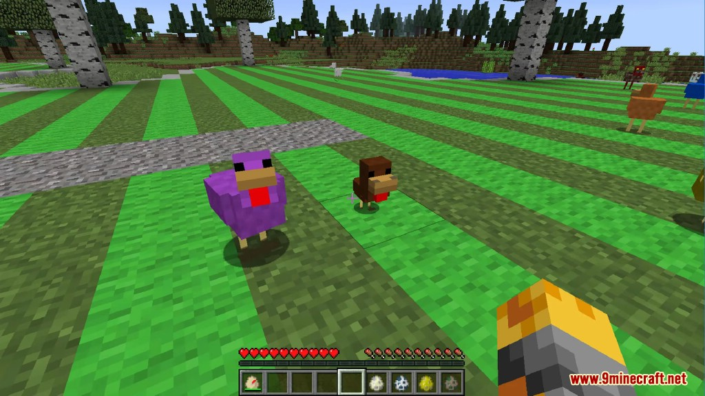 Chickens Mod Screenshots 26